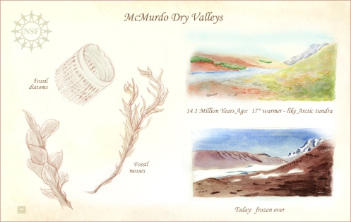 Fossils of McMurdo Dry Valleys