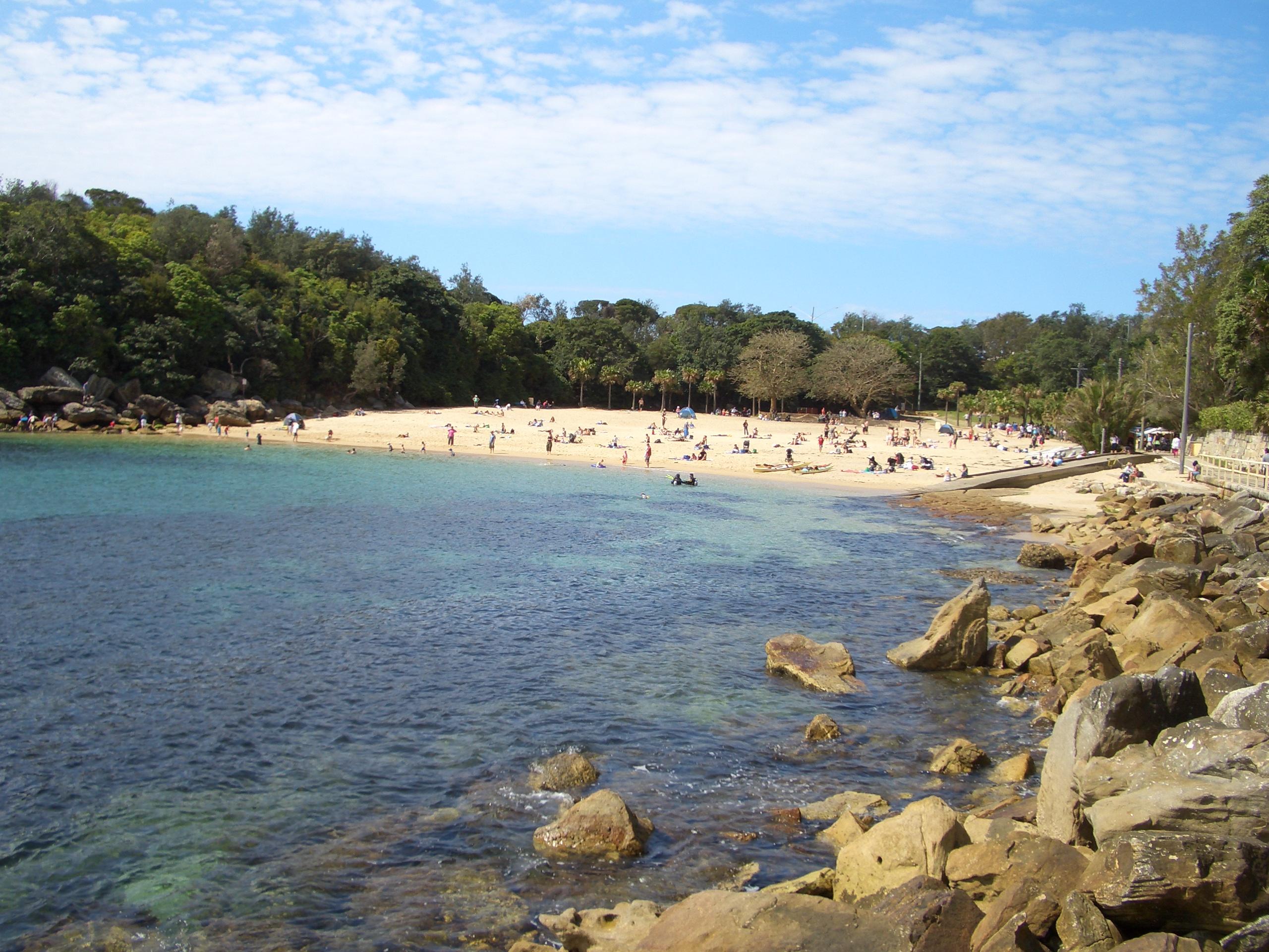 shelly beach look